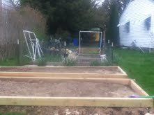 The garden right now: two long beds nearest are the foundation for the hoop house. Growing now are garlic, onions, peas, escarole, radishes, carrots, scallions and beets